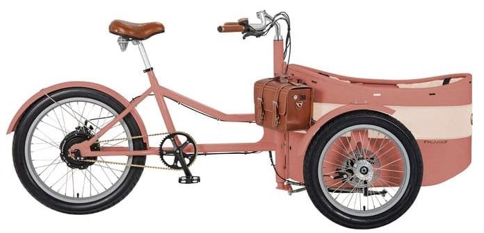 Lasten E Bike